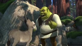 Listen, little donkey. Take a look at me. What am I?