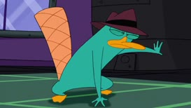 Clip thumbnail for 'Ah, Perry the Platypus, what an unexpected surprise.