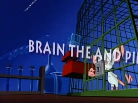 "Quiz for What line is next for ""Pinky and the Brain ""?"