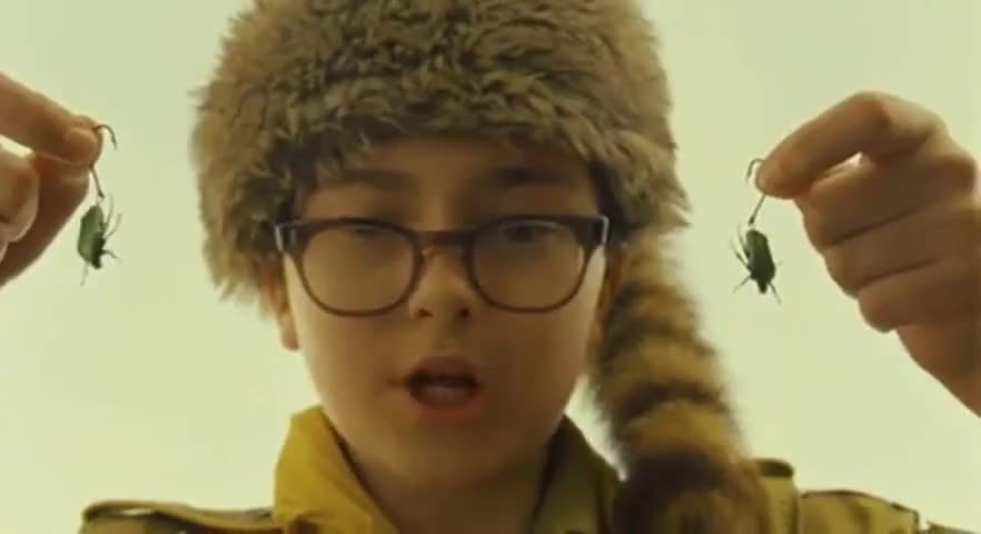 Yarn | Are your ears pierced? ~ Moonrise Kingdom (2012 ...