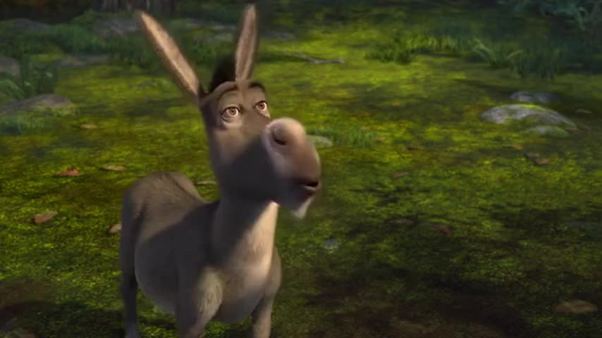 That's more like it! Shrek and Donkey, on another whirlwind adventure!