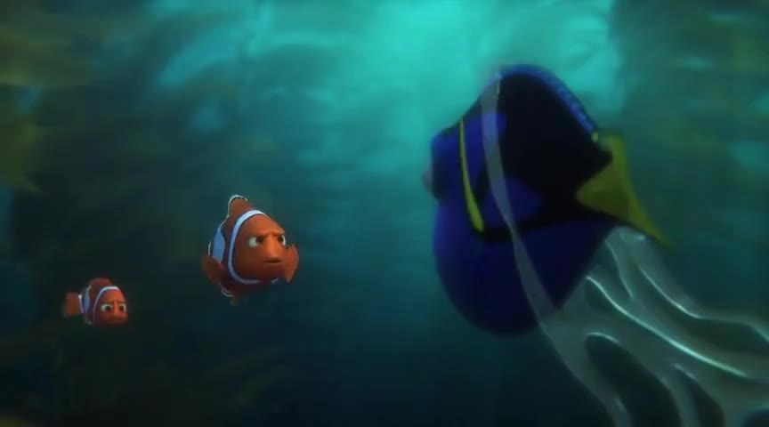 "Image result for ""finding dory"" go forget"