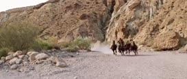 Sallah, I said no camels!