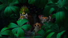 King Julien, what are they? What are they?!