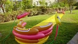Whoa! It's the hot dogger!