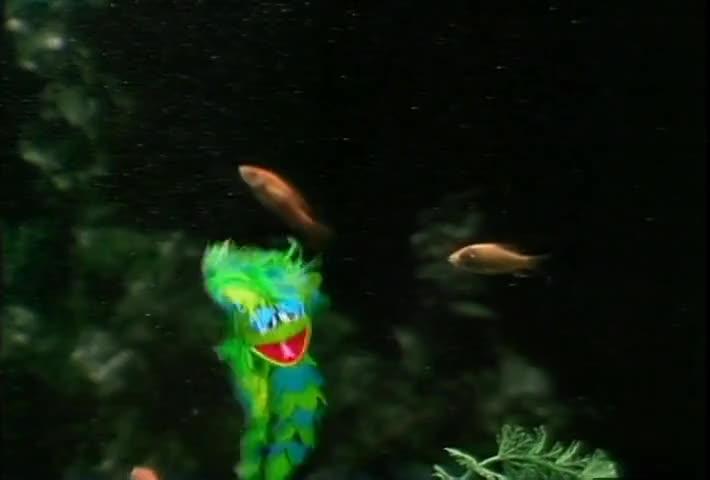 ♪ I love the fish I'm near