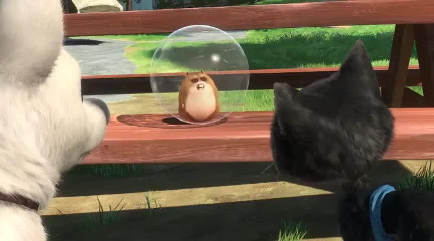 Yarn Im Rhino Rhino The Hamster Bolt 2008 Video Clips