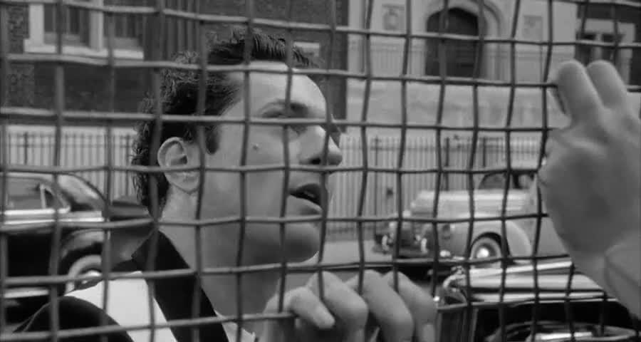 Quiz for Martin Scorsese Quiz screenshot