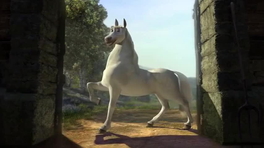 - Donkey? You're a... - A stallion, baby!