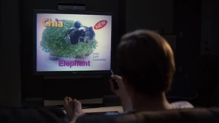 Chia Elephant, Chia Cow and Chia Lion Cub.