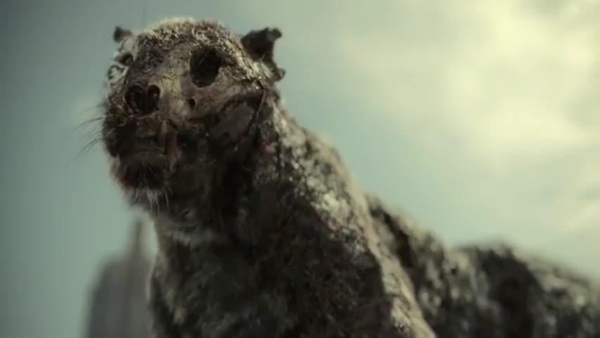 [Martin] It's a goddamn zombie tiger.
