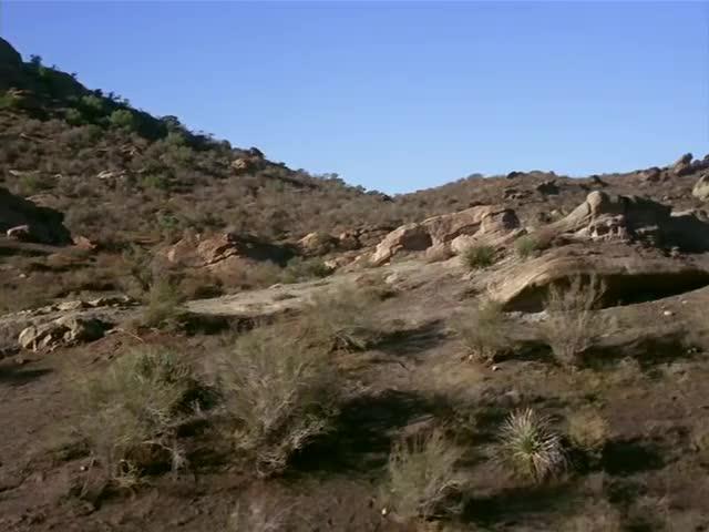 an abundance of mineral deposits--