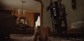 - Oh, no. Oh, no. - (CAT YOWLS)