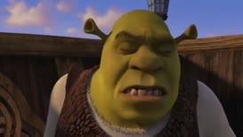 Shrek! Are you okay?