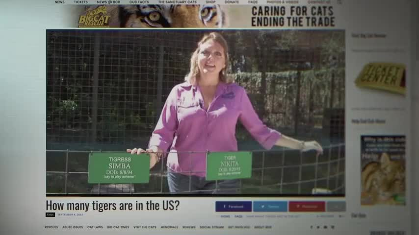 Hi, I'm Carole Baskin and I'm the founder and CEO of Big Cat Rescue.