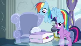 Do you have time to tell us what happened, Rainbow Dash?
