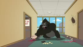 "It should have just said ""gorilla door""!"