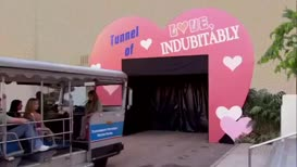 And soon the tour arrived at the Tunnel of Love, Indubitably.