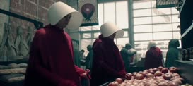 "Quiz for What line is next for ""The Handmaid's Tale ""?"