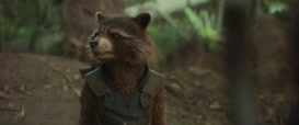 That's how eyesight works, you stupid raccoon.
