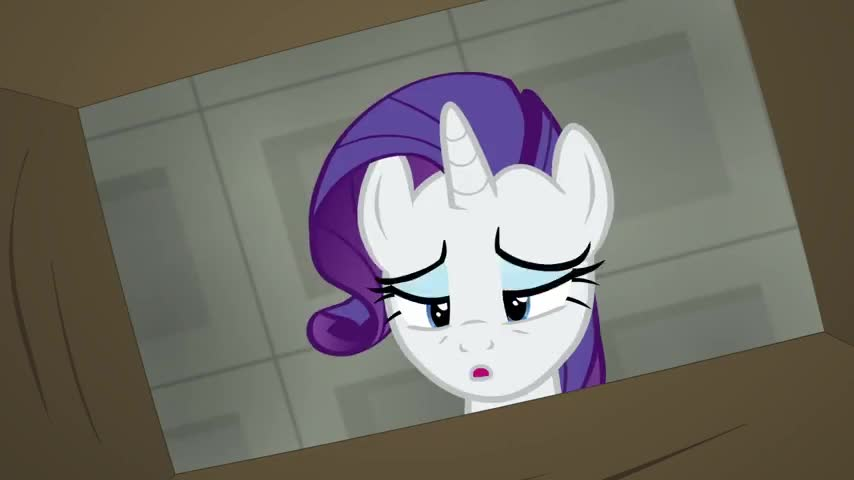 Wait. is this my merchandise shipment from Ponyville?