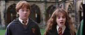At least no one on the Gryffindor team had to buy their way in.