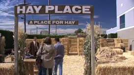 Hello! Welcome to Hay Place. A place for hay.