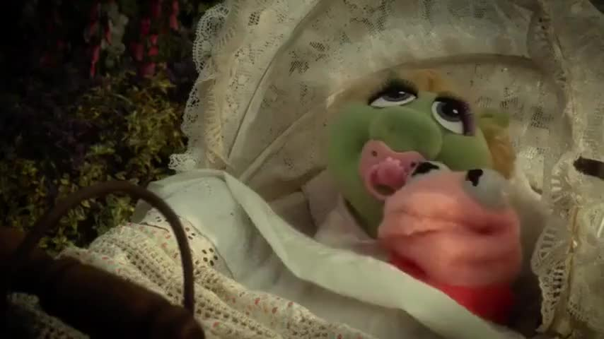 A little pink frog and a little green piggy
