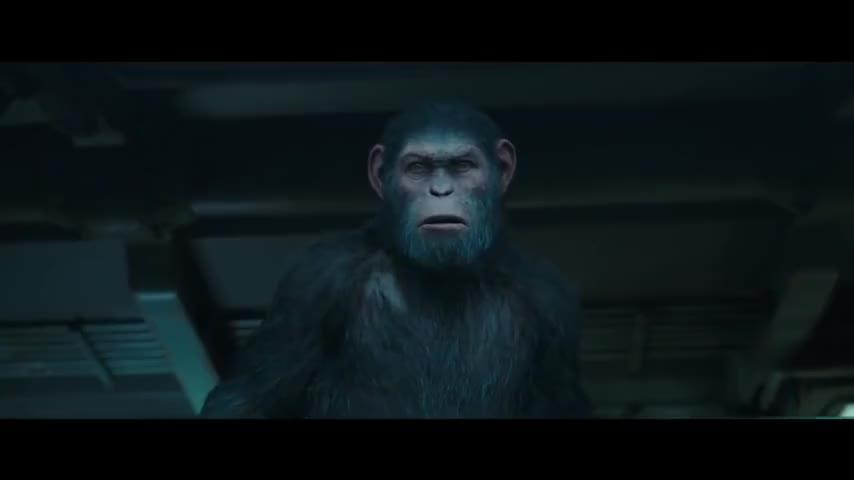 Quiz for July 2017 New Movie Release Quiz screenshot