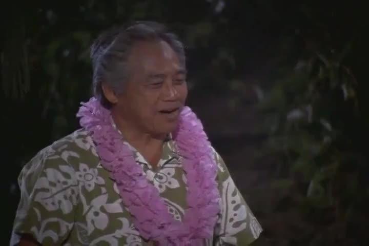 We consider them kama'ainas... Old Hawaiian friends.