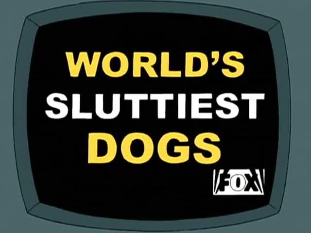 "We now return to ""World's Sluttiest Dogs"" on Fox."