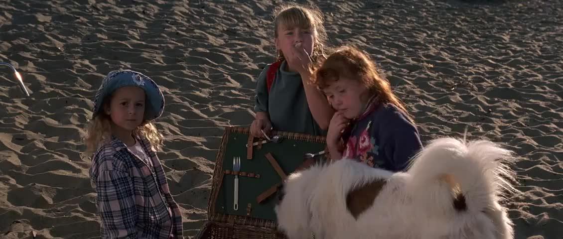 - I brought him back, everybody! - He's okay.