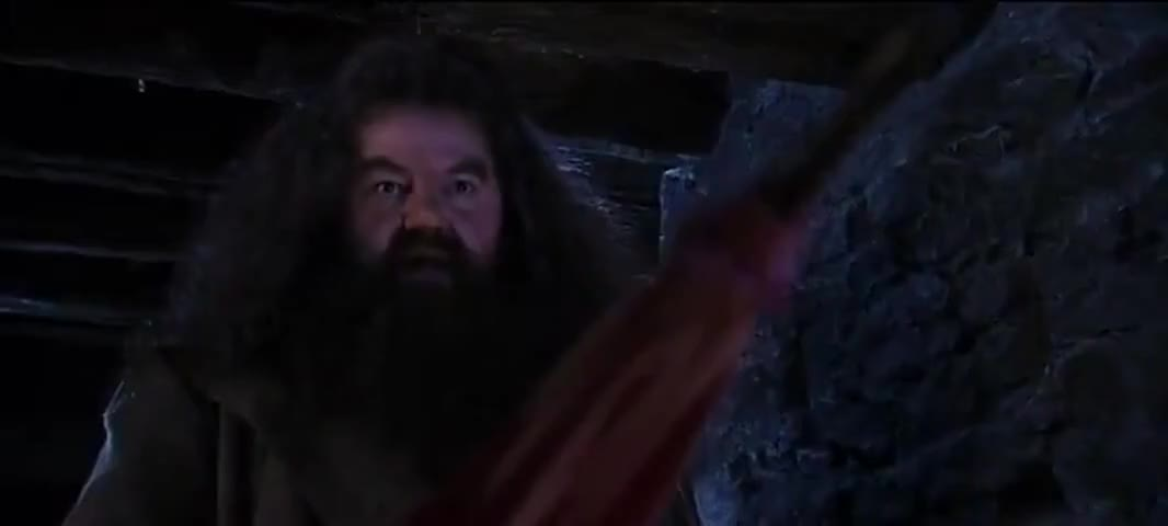 Never insult Albus Dumbledore...